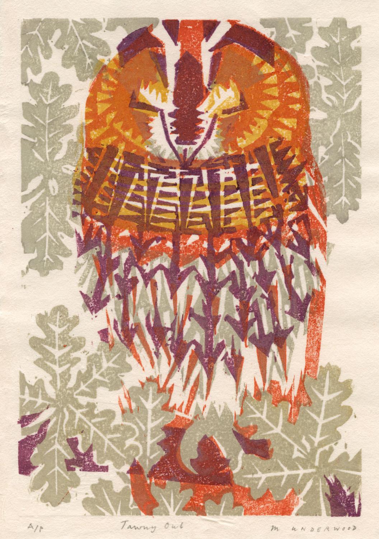 <p>Tawny Owl by Matt Underwood</p>