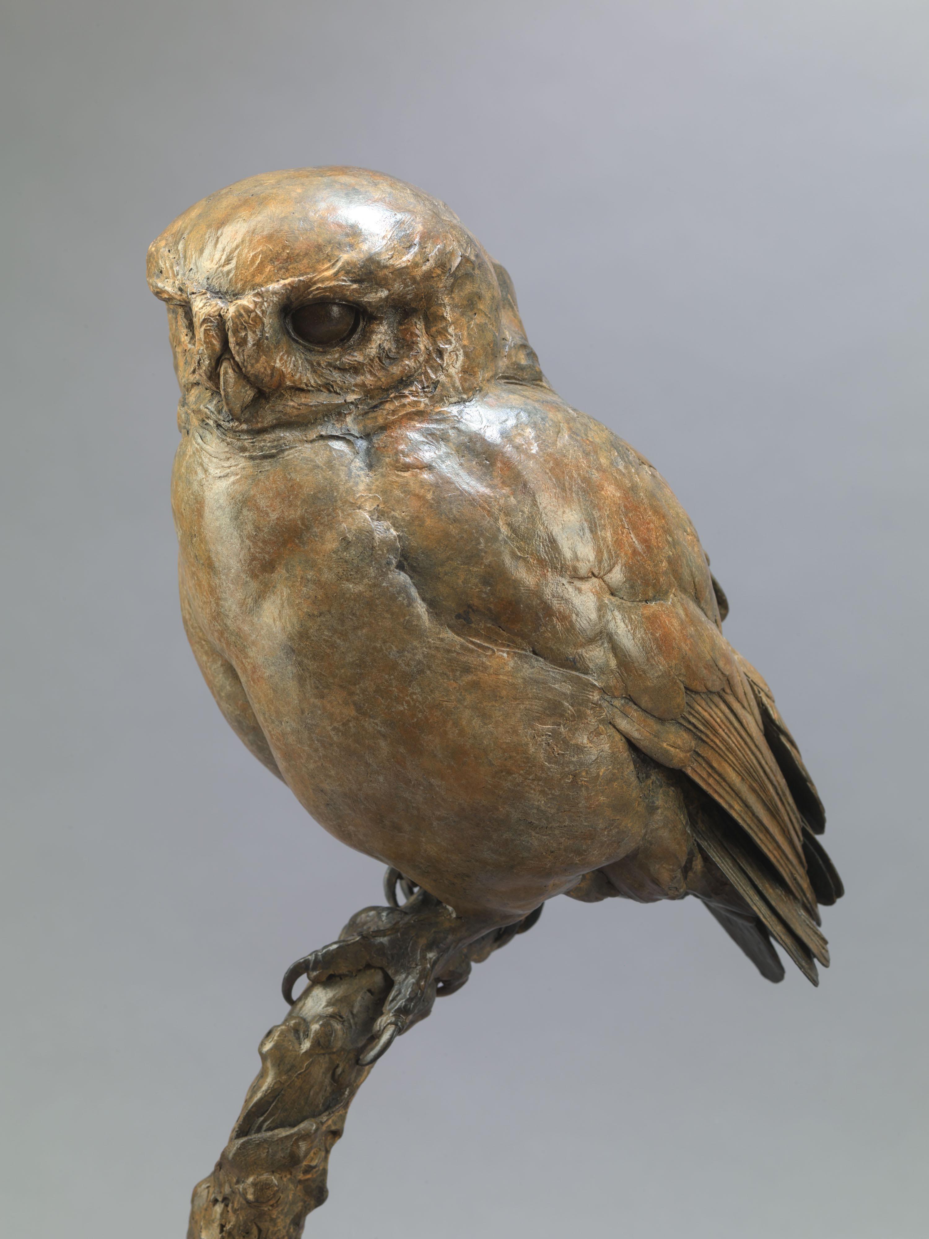 Little Owl II, Bronze, 50 cm x 20 cm x 20 cm