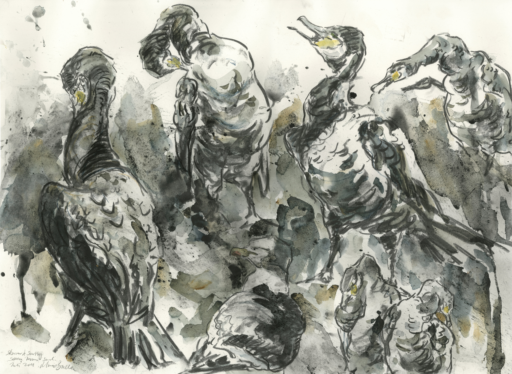 Cormorants in the summer heat, Watercolour and charcoal on paper, 80 cm x 100 cm