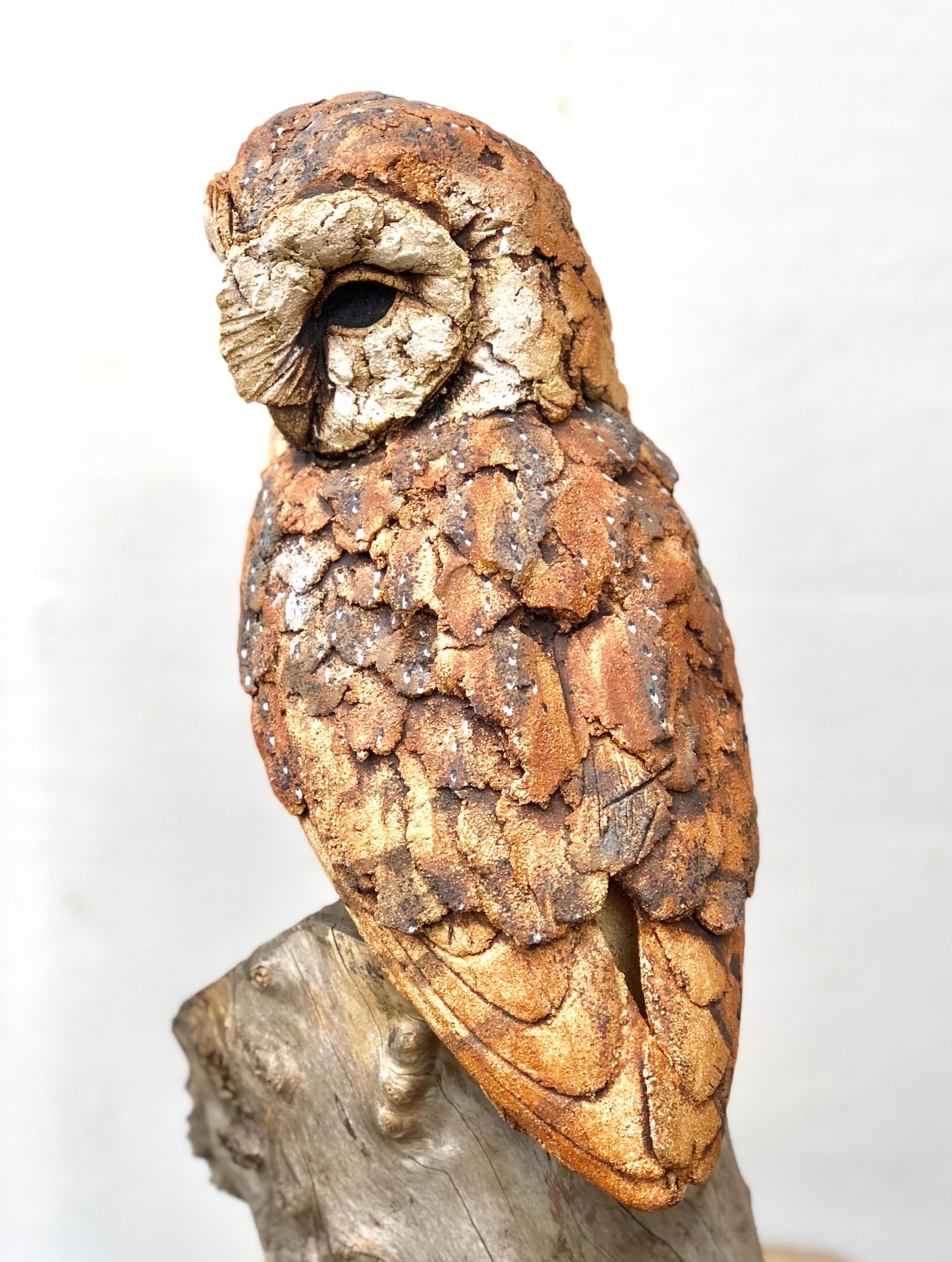 Barn Owl, Ceramic (high fired), 170 cm x 30 cm