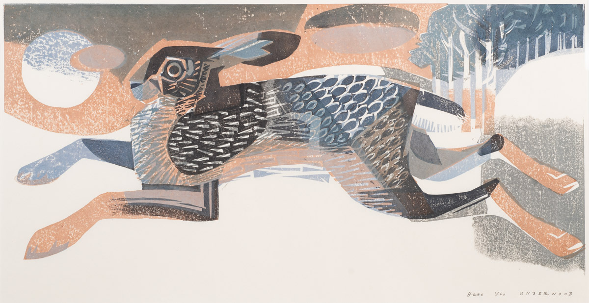 <p>Hare by Matt Underwood</p>