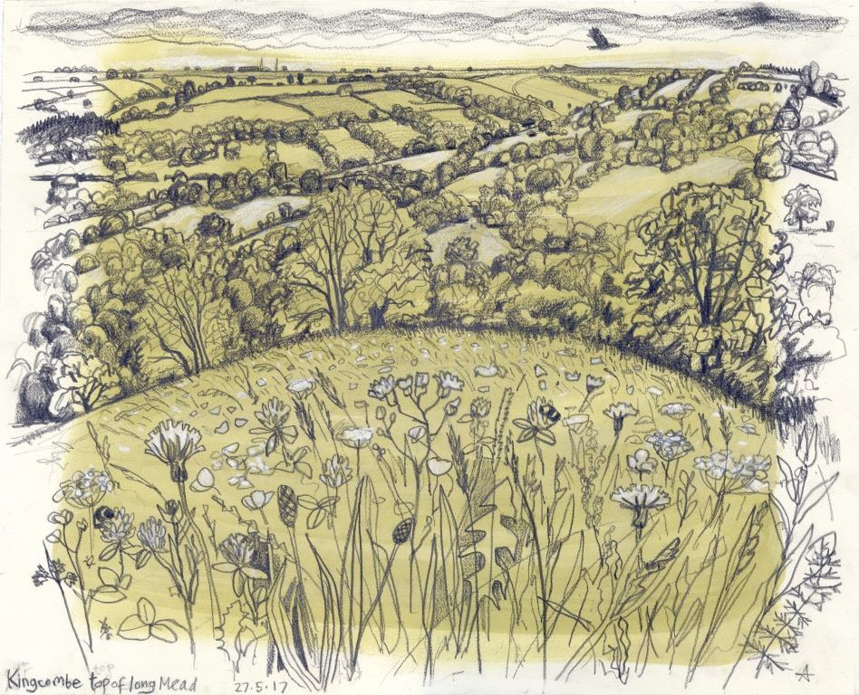 Kingcombe by Carry Akroyd
