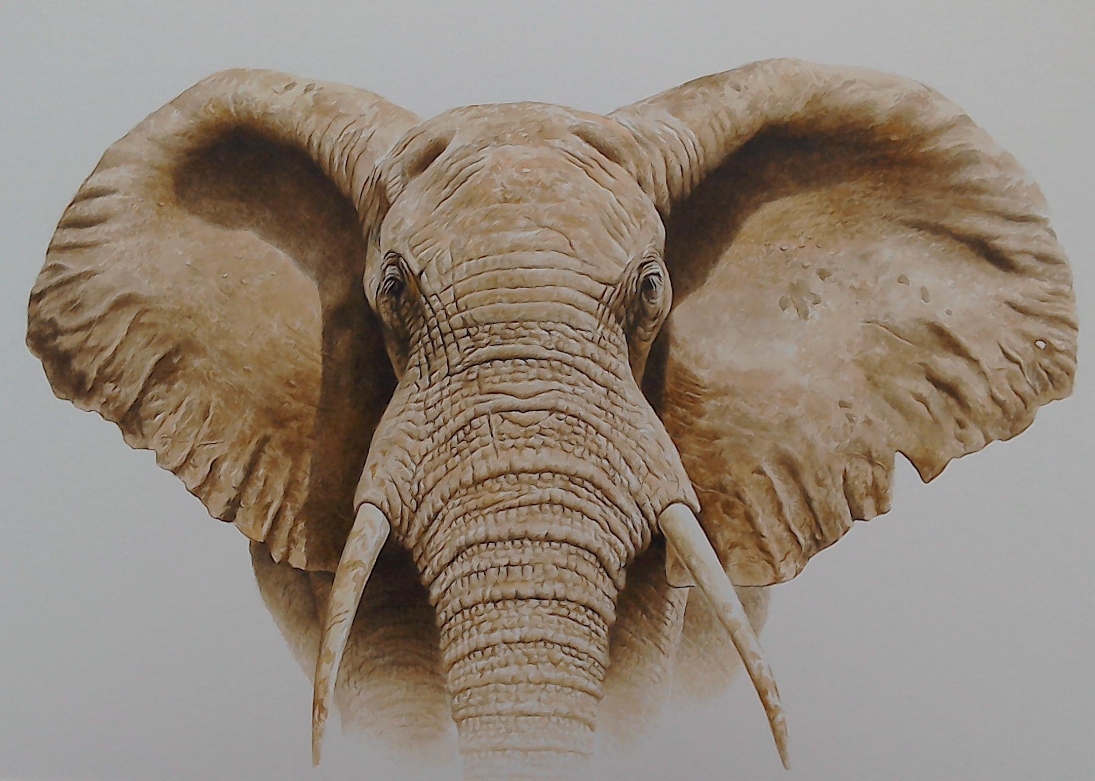 Masai Mara Bull Elephant, Watercolour, 86 cm x 109 cm