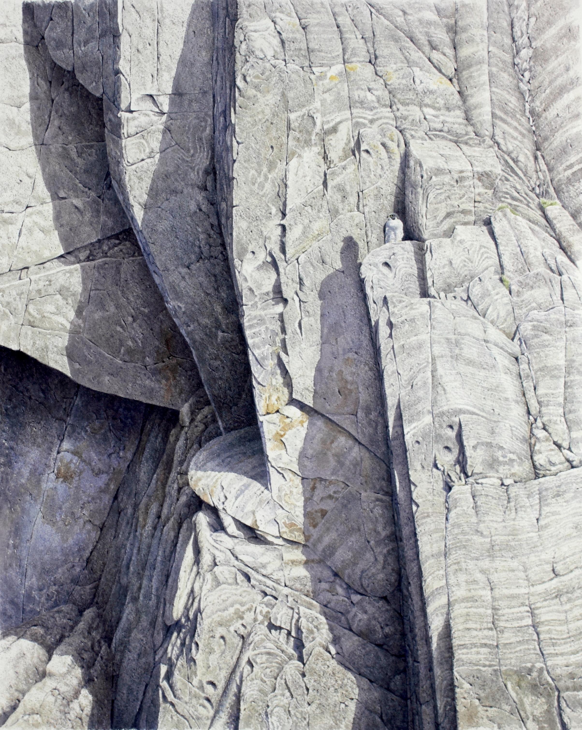 Butter Hole Peregrine, Watercolour, 58 cm x 48 cm