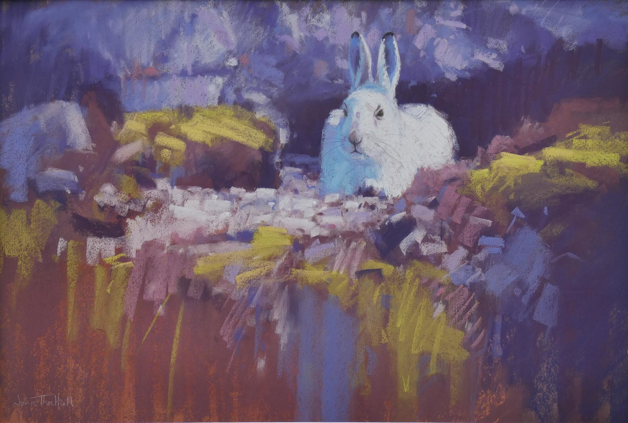 Mountain Hare, Pastel on paper
