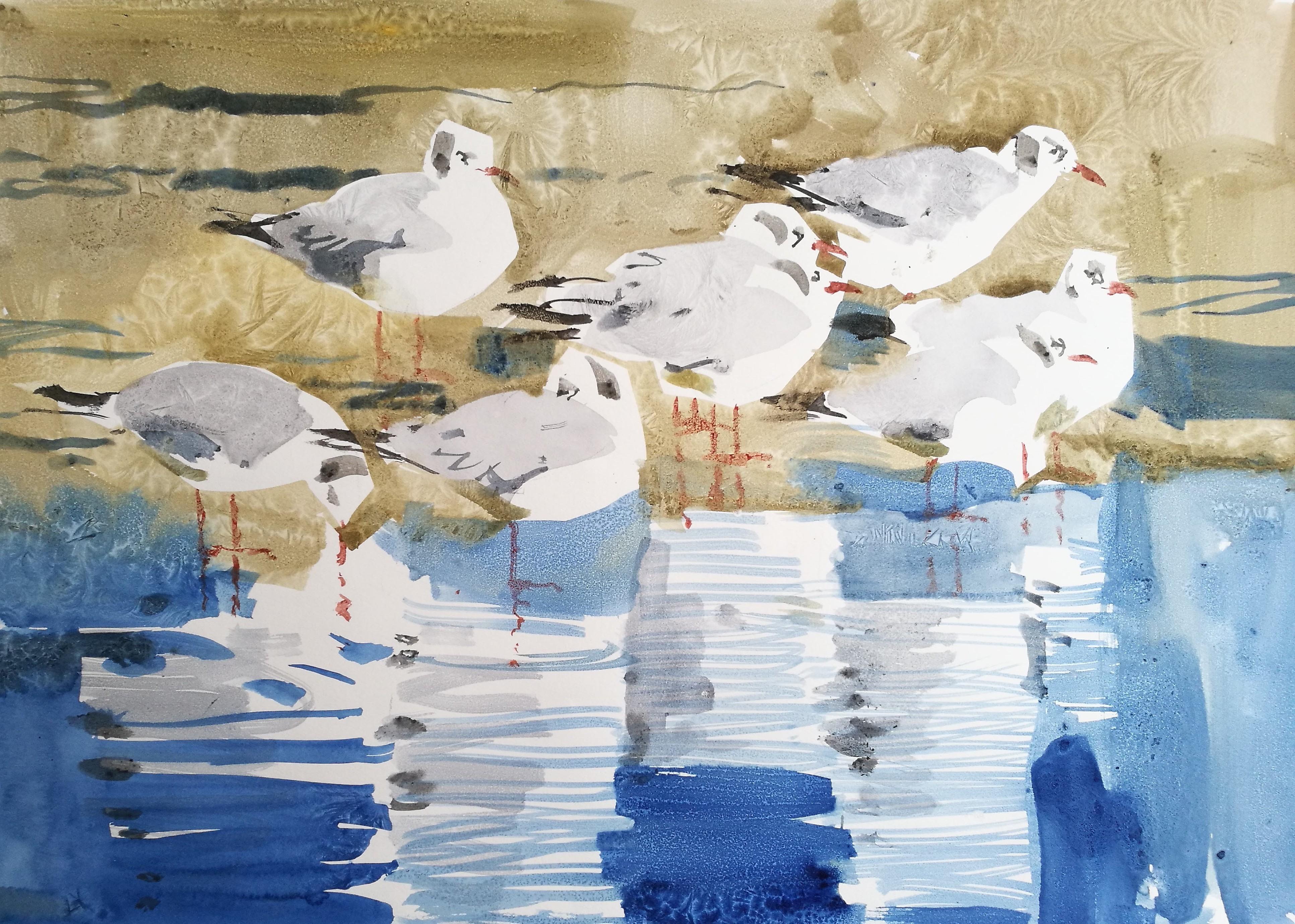 Black-headed Gulls, Watercolour on paper