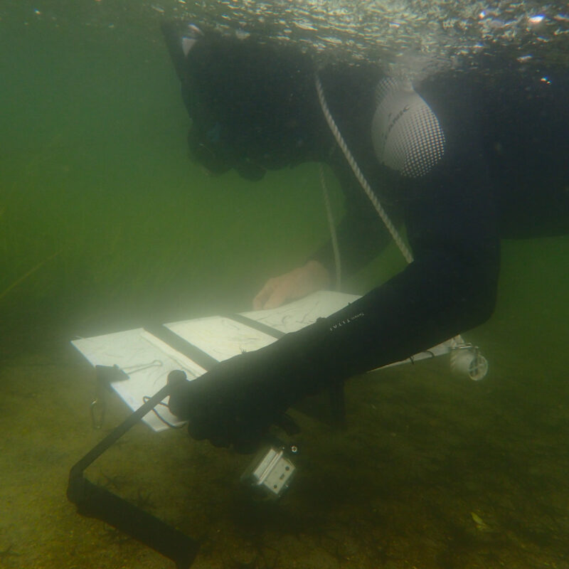 Bruce Pearson draws underwater.
