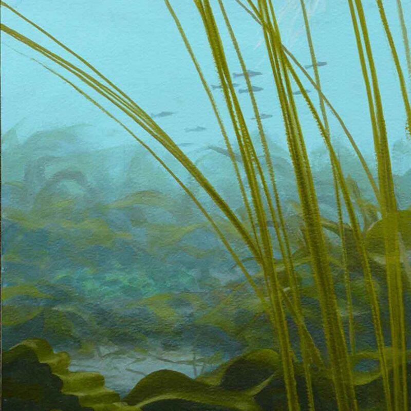 Farne Islands underwater painting, Chris Rose