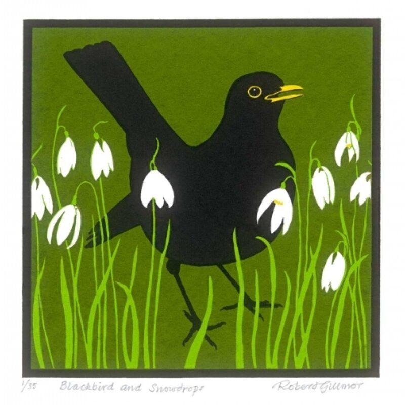 Blackbird and snowdrops by Robert Gillmor