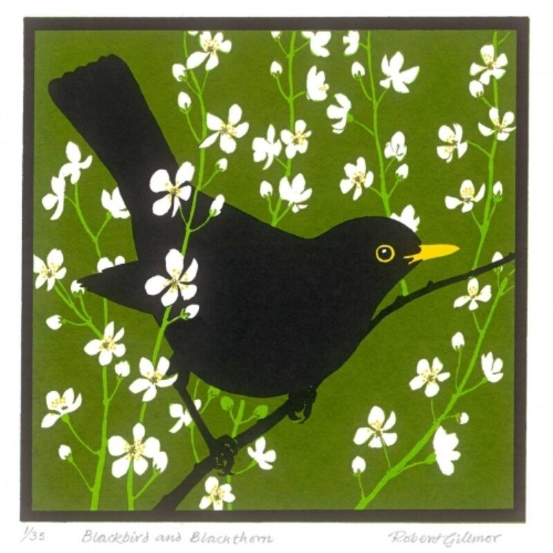 Blackbird and blackthorn by Robert Gillmor