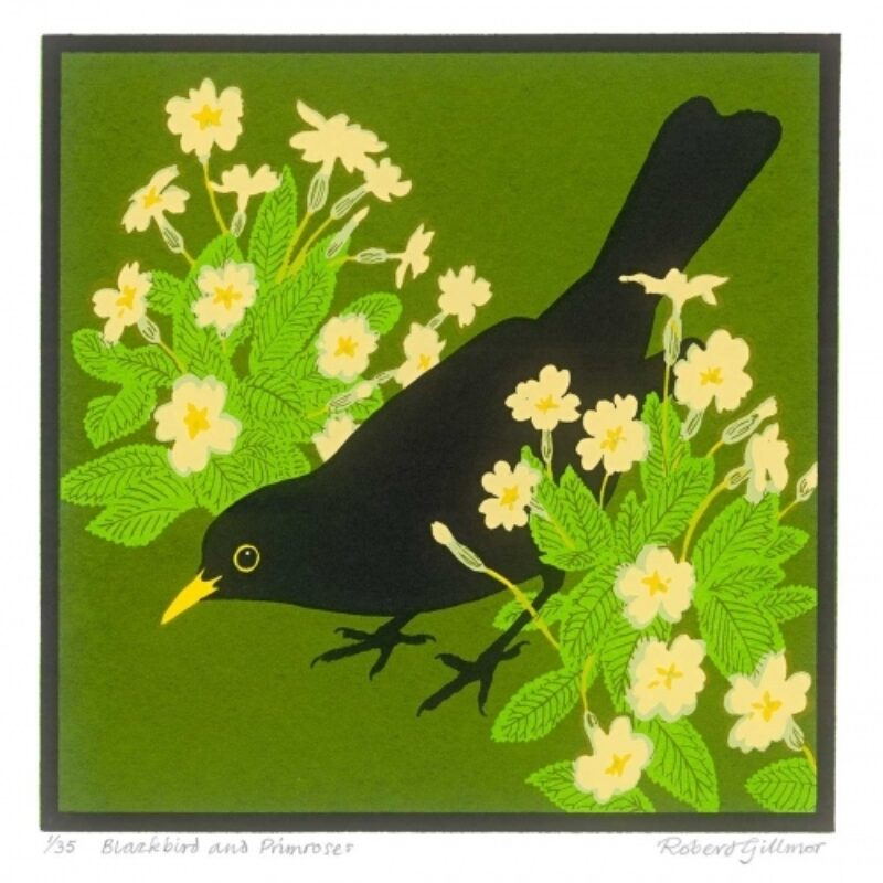 Blackbird and primroses by Robert Gillmor