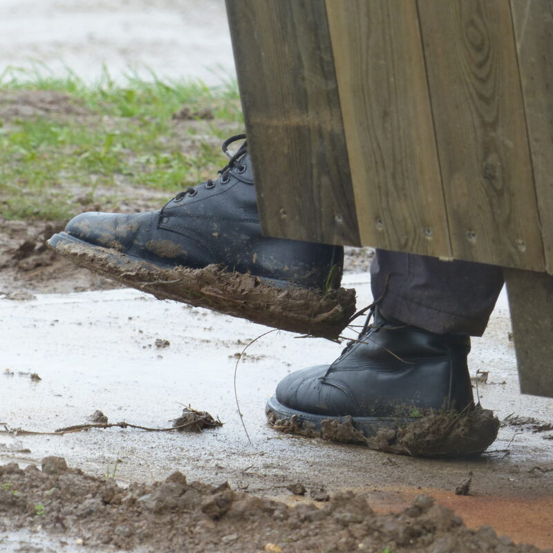 it rained a fair bit...