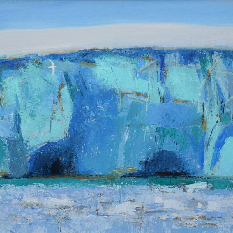 Snoe Petrel and ice cliff by Dafila Scott
