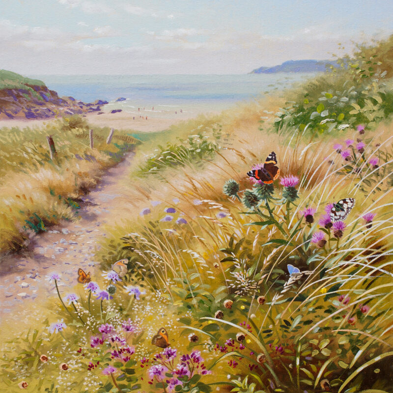 Butterflies on the South Wes Coast by Richard Tratt