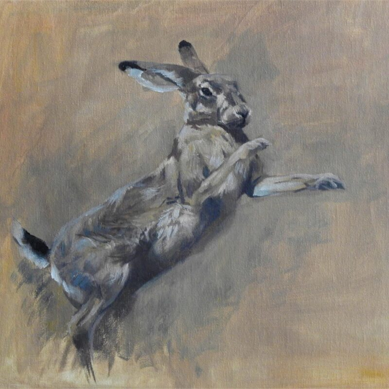 Lepus Pugilistus I by Tim Wootton
