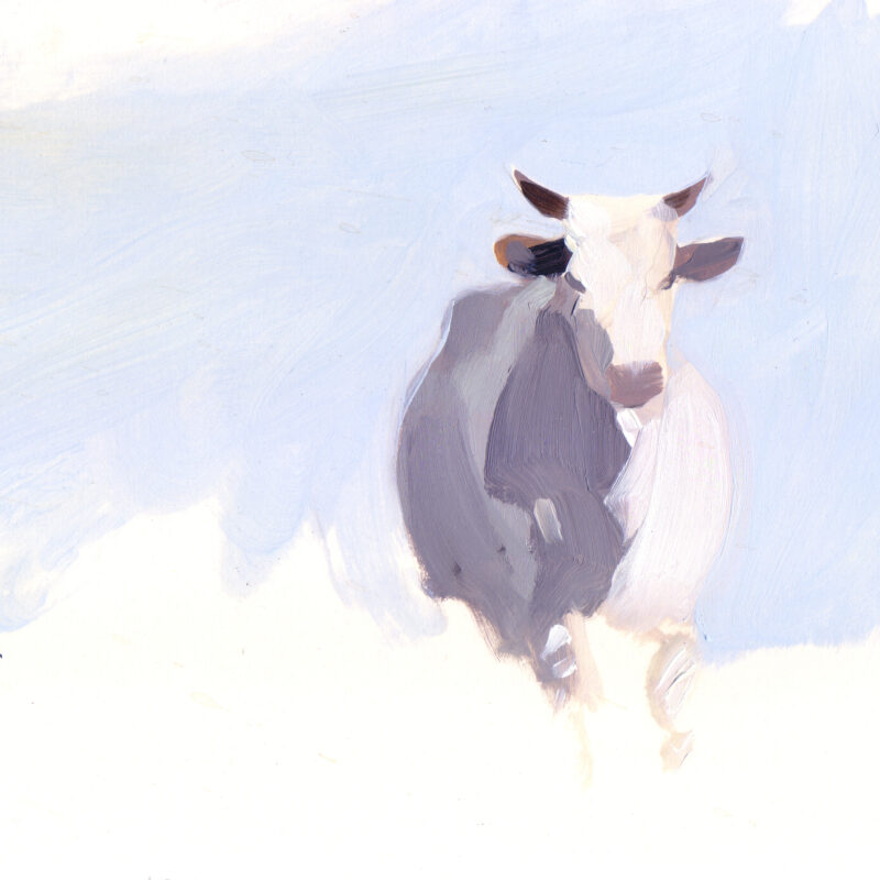 Cow, Esther TysonEsther Tyson