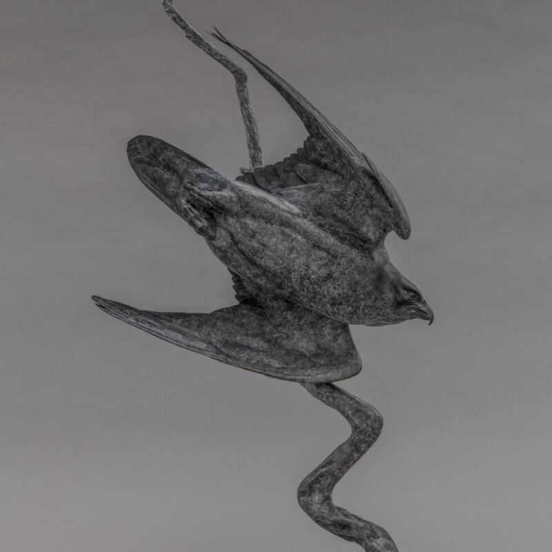 Peregrine II (lightening bolt) by Nick Bibby