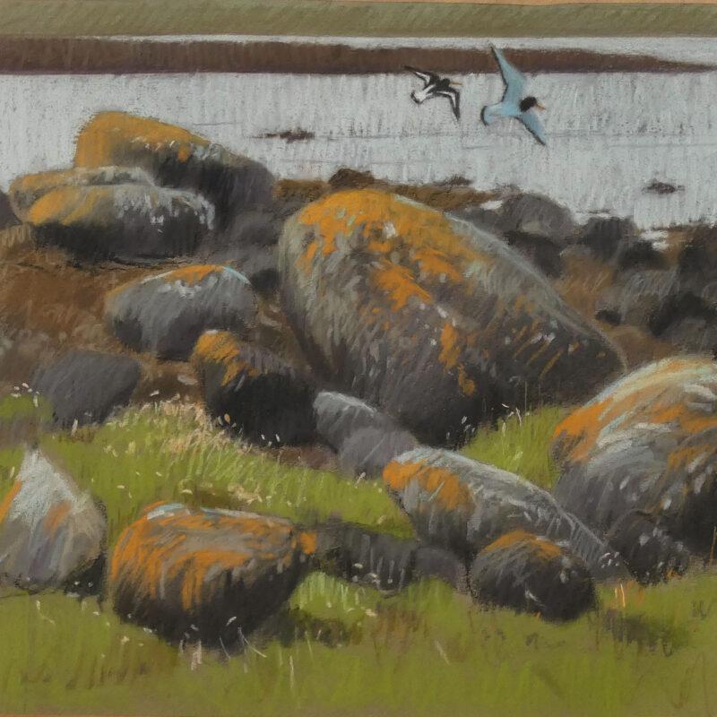 Shoreline, John Threlfall