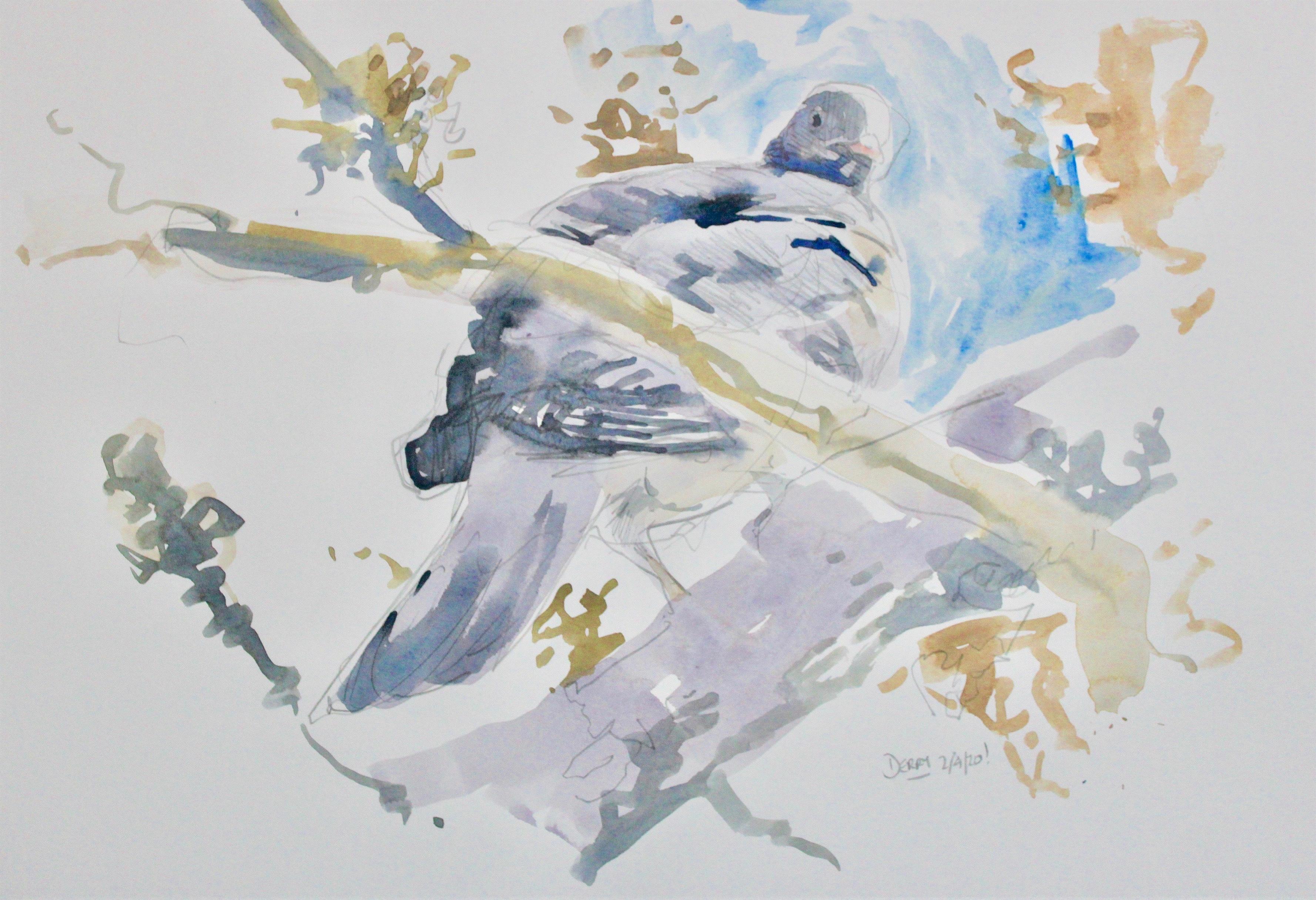 <p>Woodpigeon by Nick Derry</p>