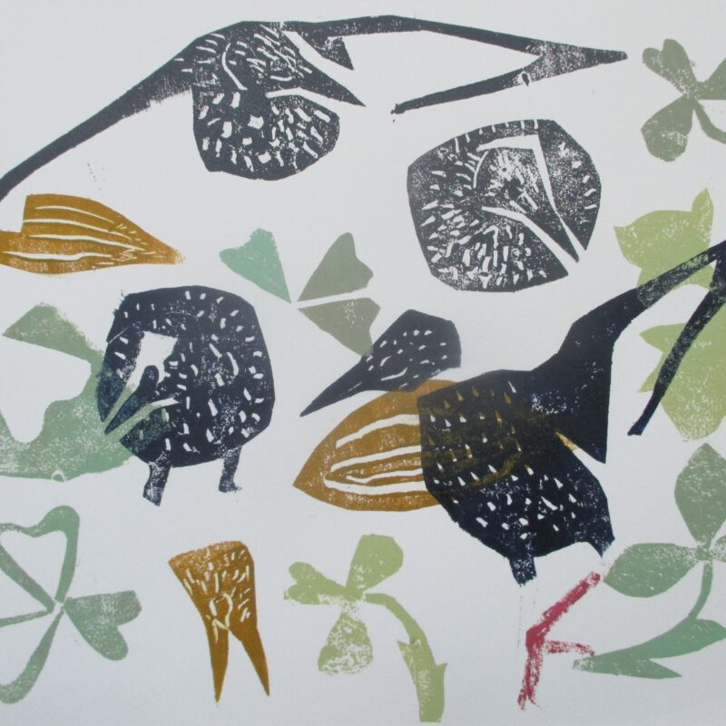 Starlings, February by Kim Atkinson