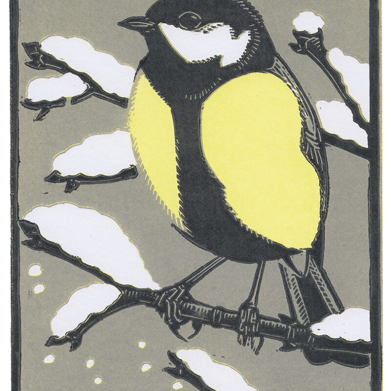 Great Tit by Richard Jarvis