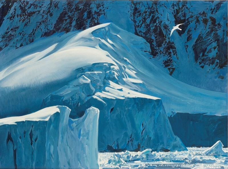 Graham Coast (snow petrel) by Keith Shackleton MBE  © Courtesy Rountree Tryon Gallery