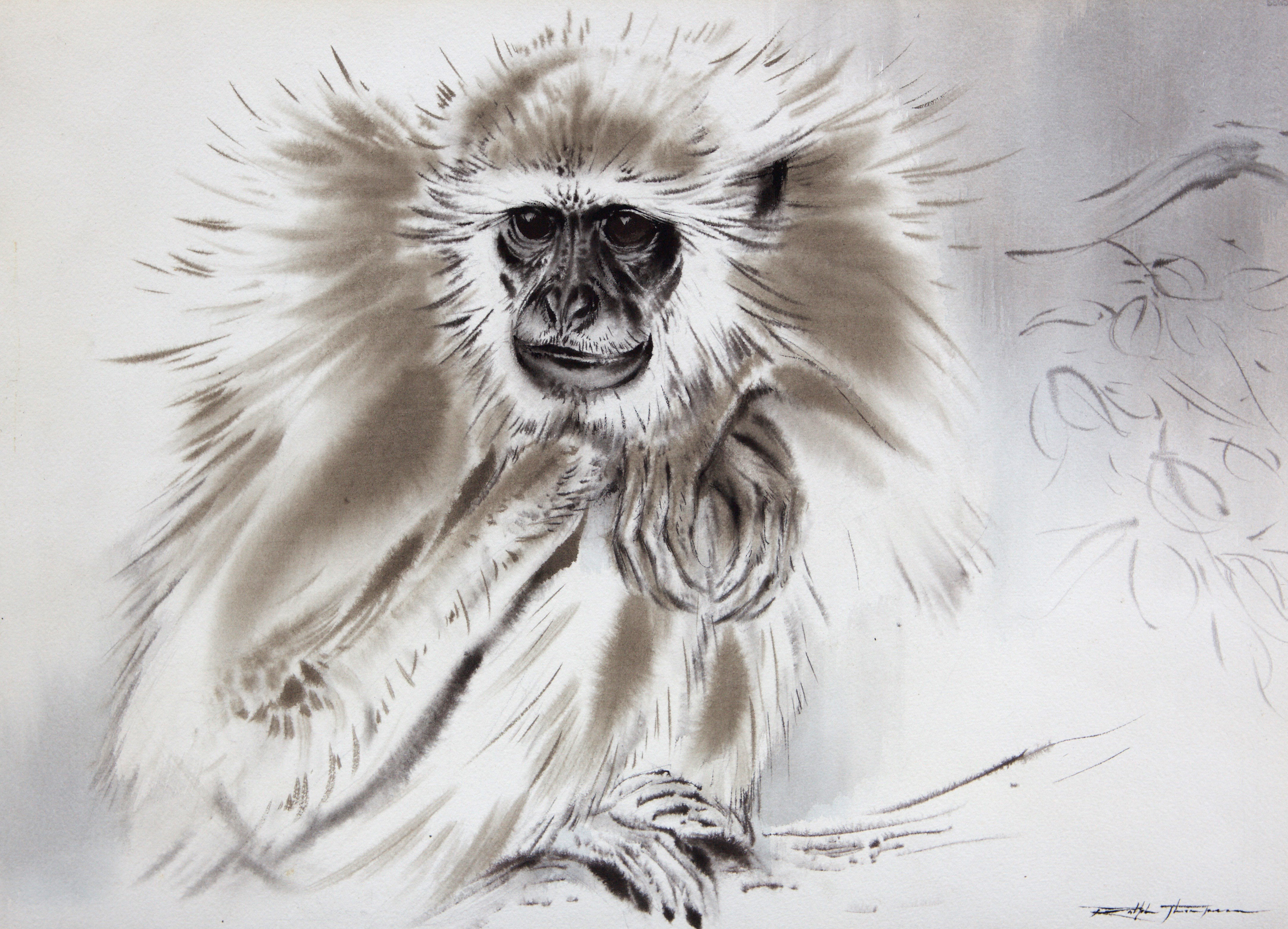 Grey Langur by Ralph Thompson MBE  © Courtesy Estate of Ralph Thompson
