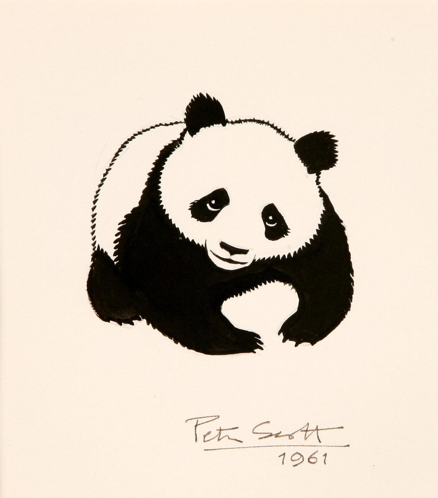 Giant Panda WWF Logo ink drawing by Sir Peter Scott  © Courtesy Dafila Scott
