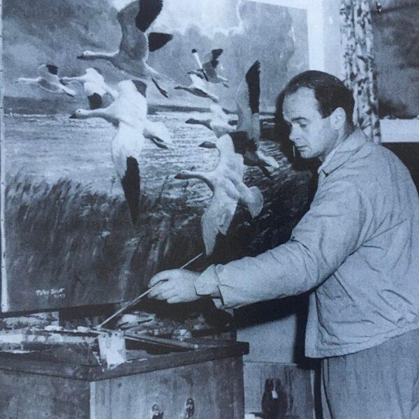 Image of Sir Peter Scott 1909–1989
