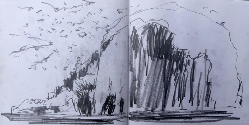 Gannet sketchbook studies from the Bass Rock and circling the island by boat.