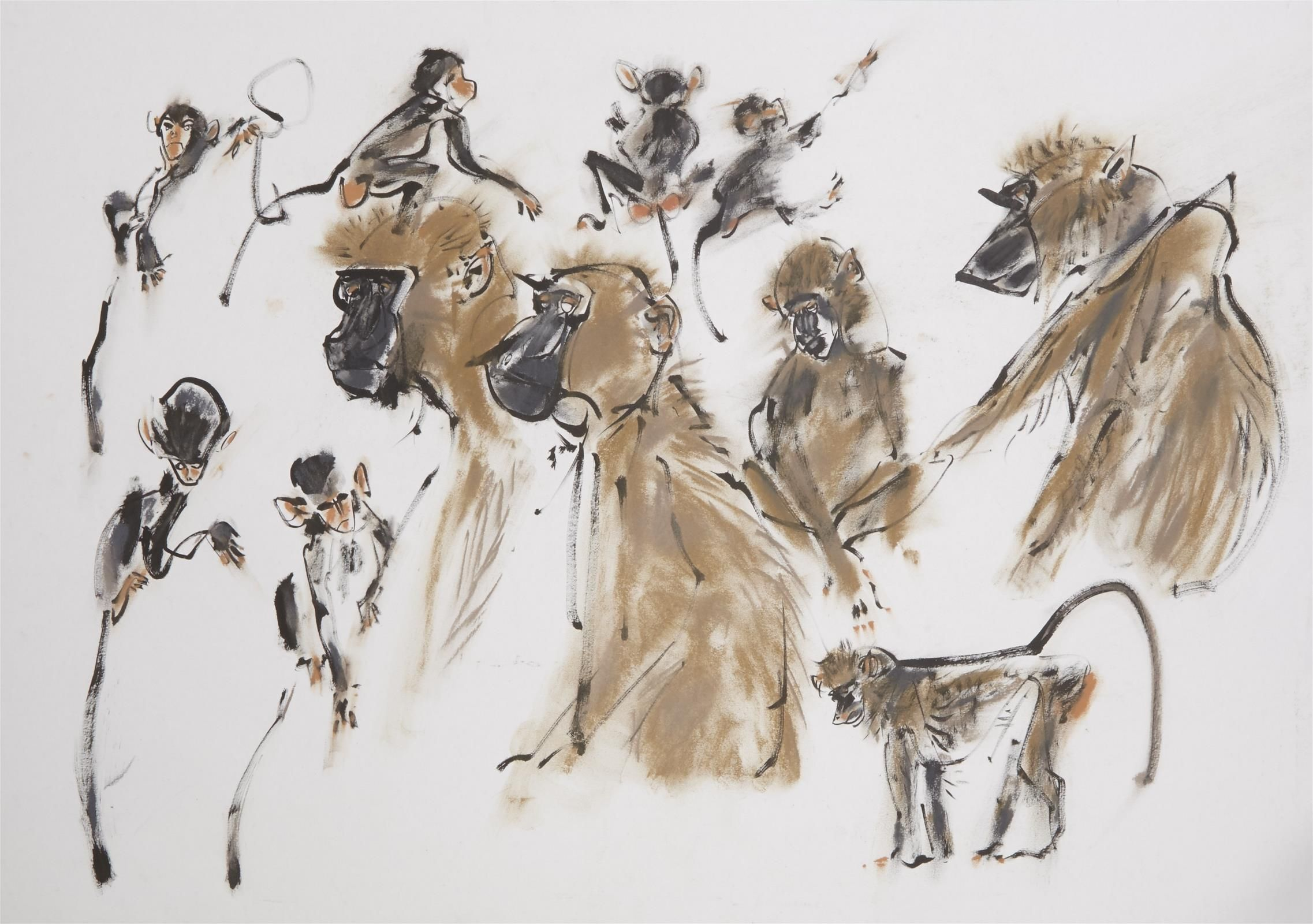 <p>Olive Baboons by Wynona Legg ASWLA</p>