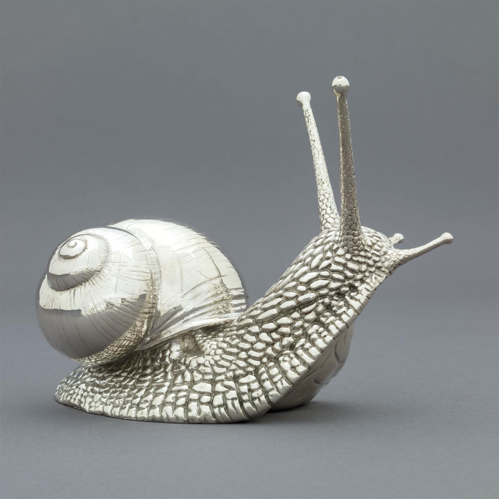 <p>Silver Garden Snail by Nick Bibby</p>