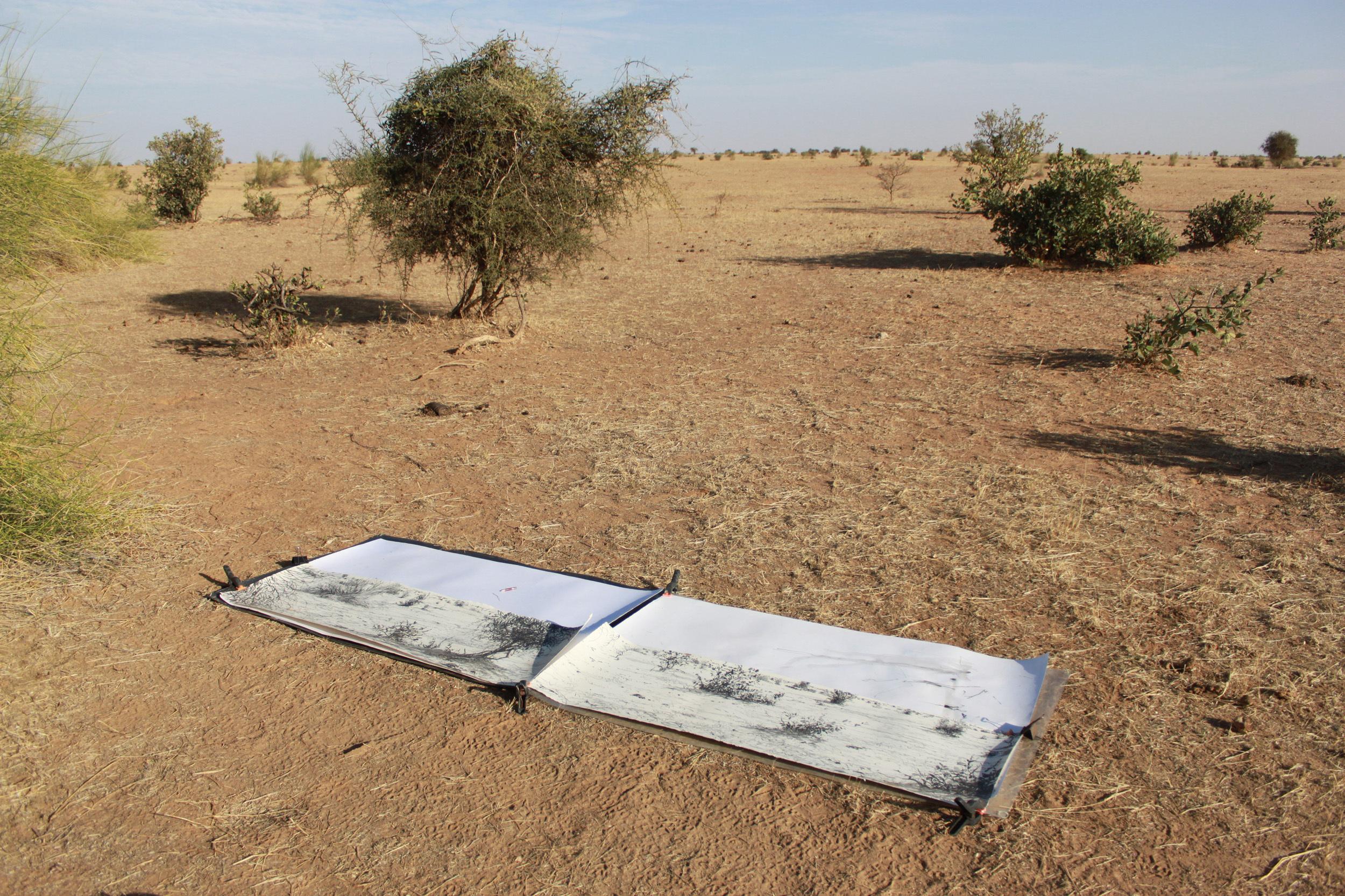 <p>Sahel artwork, SWLA Senegal Trip, Bruce Pearson</p>