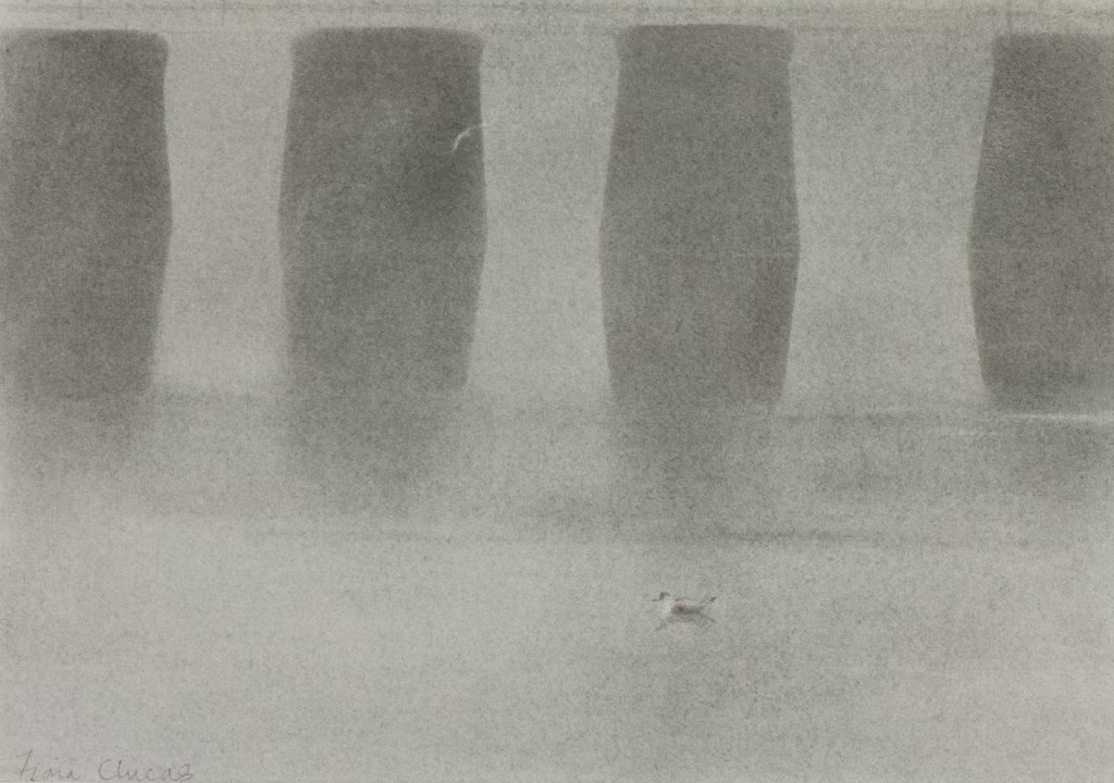 <p>Fog and wading birds, Arnside by Fiona Clucas</p>