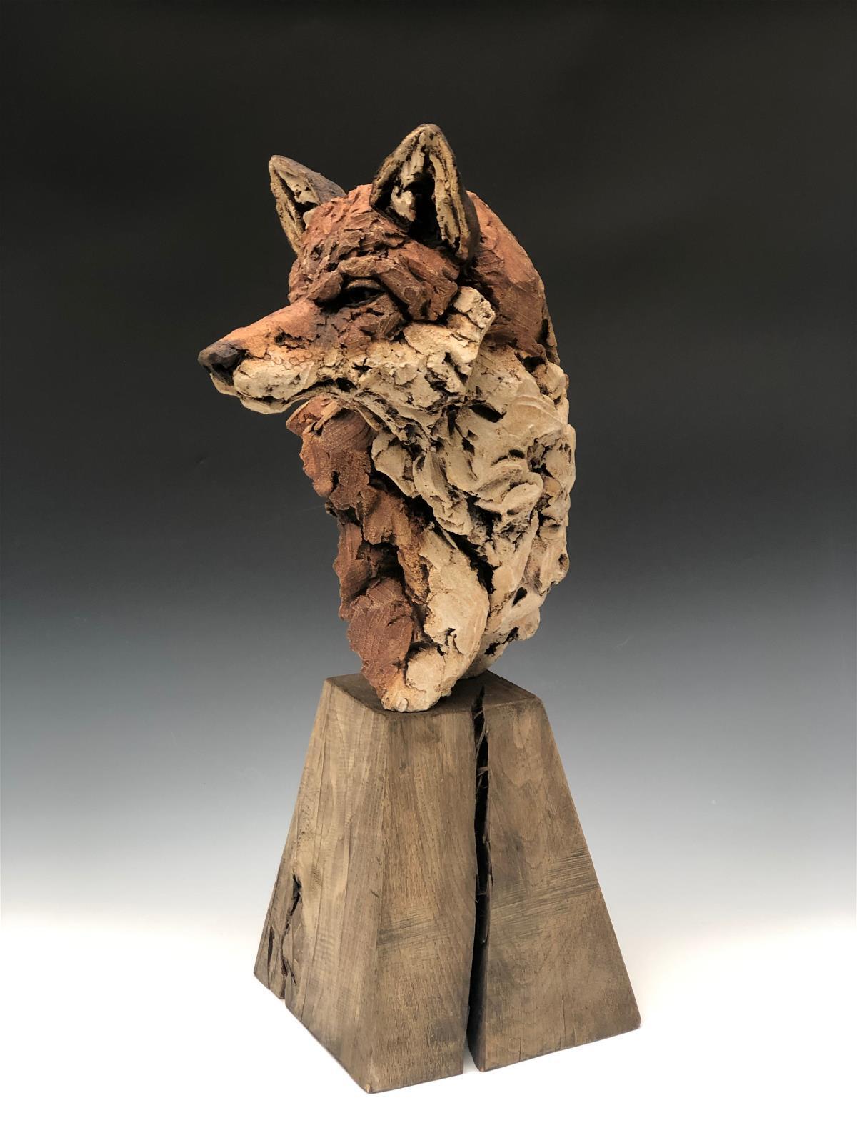 <p>Fox portrait by Simon Griffiths</p>