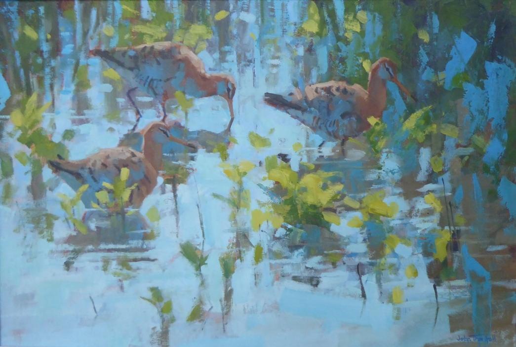 John Threlfall, Black tailed Godwits