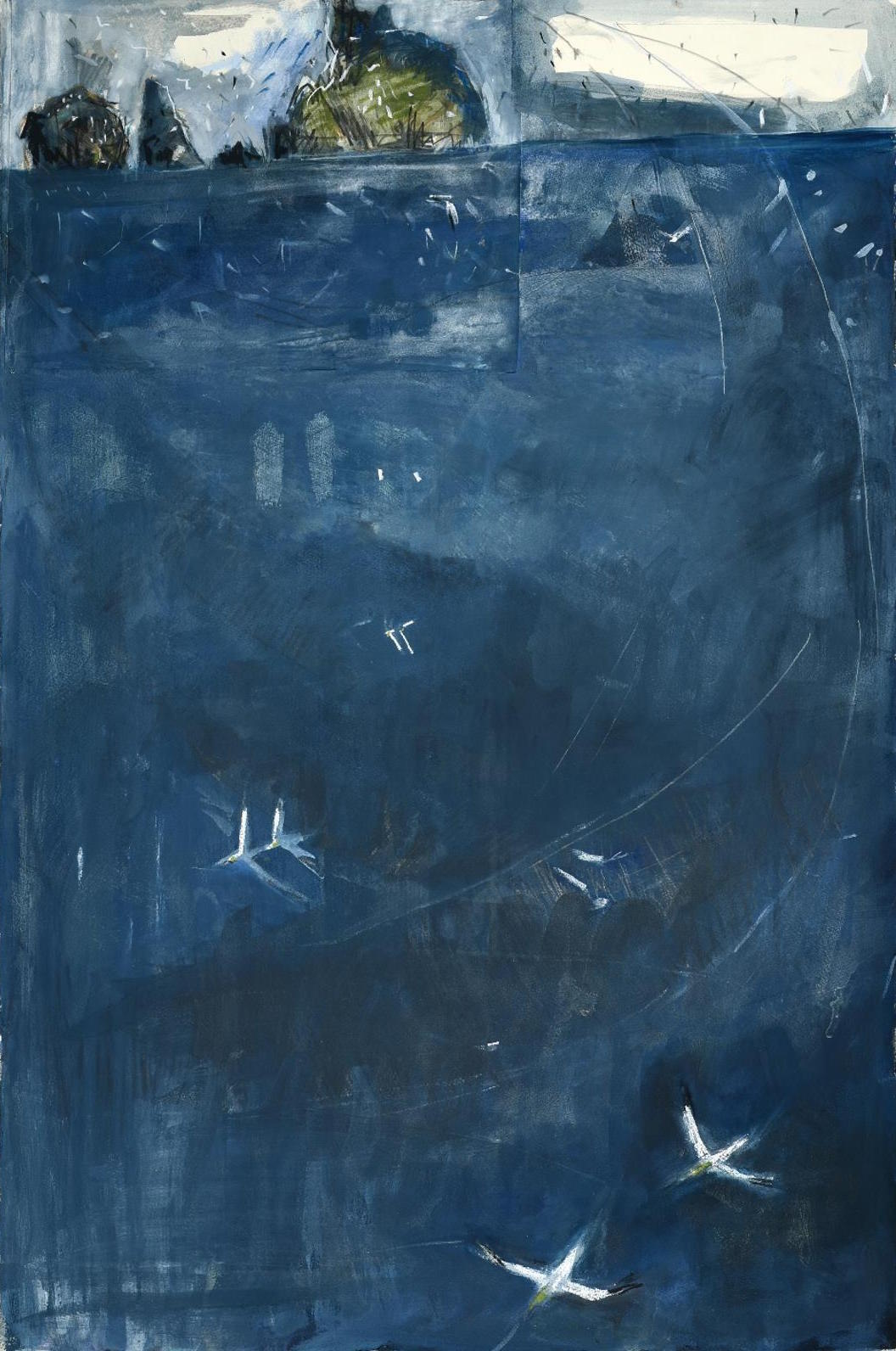 <p>Gannets over the Atlantic by Kittie Jones</p>