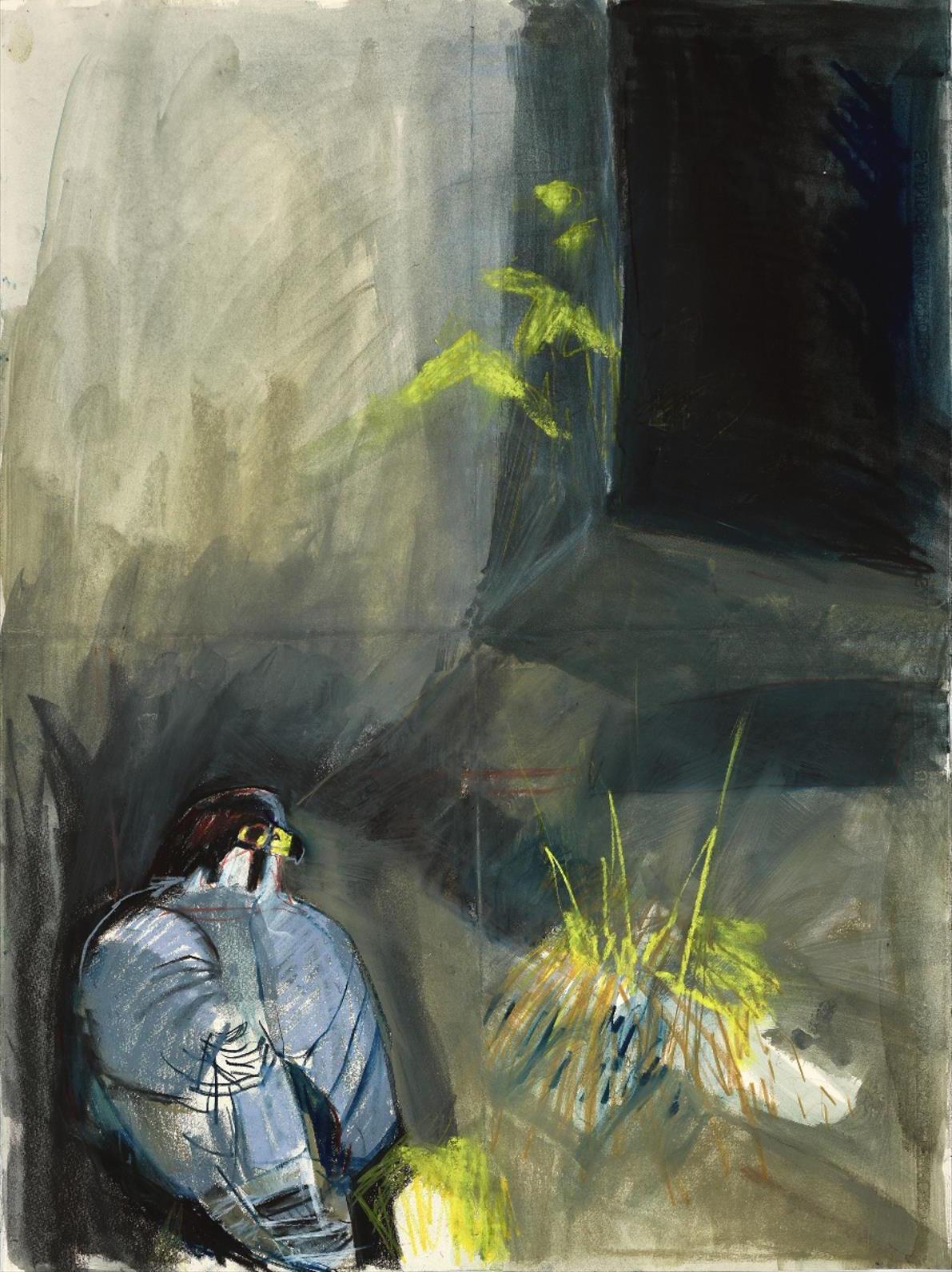 <p>Resting Peregrine by Kittie Jones</p>