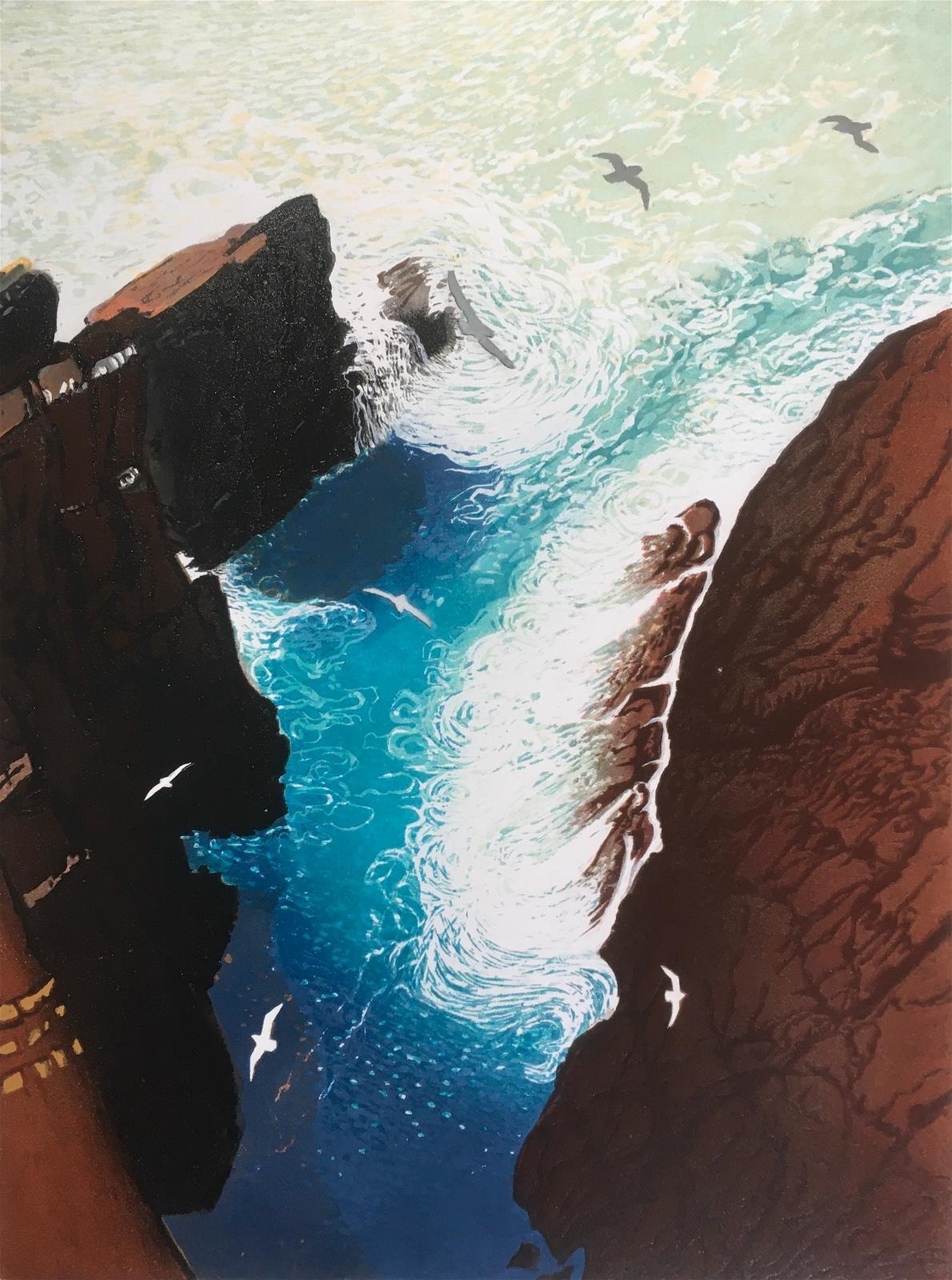 <p>Fulmars over Mad Bay by Julia Manning</p>