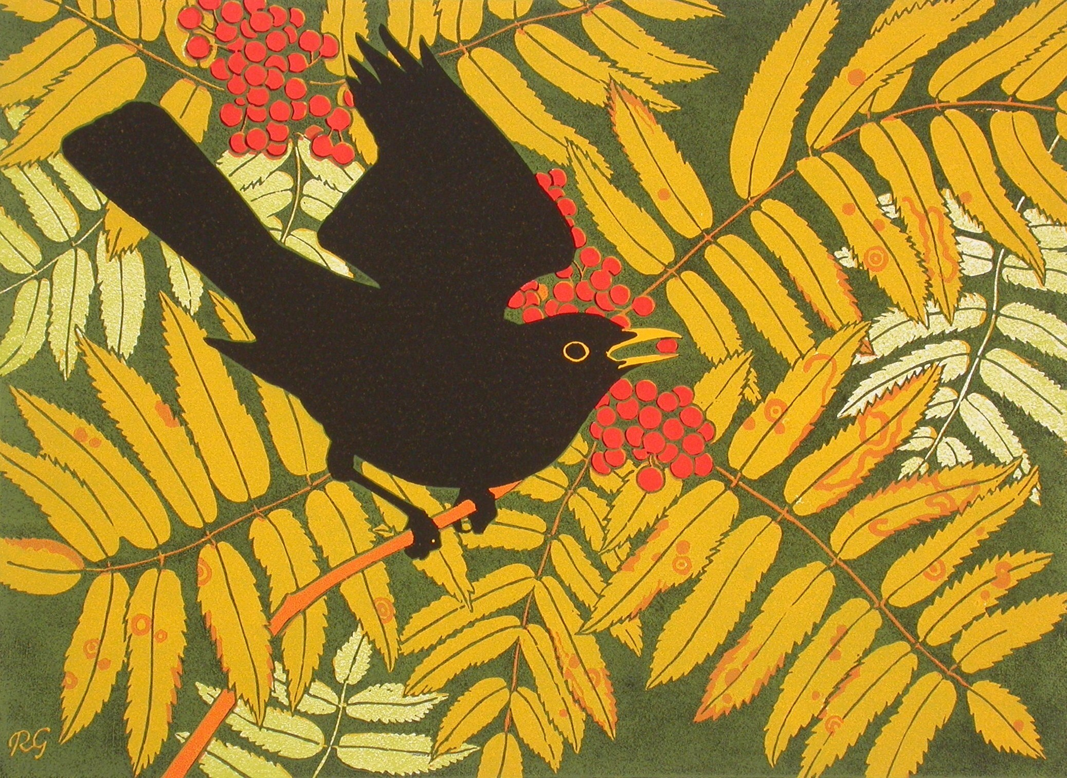 <p>Blackbird in rowan by Robert Gillmor</p>
