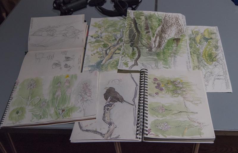 <p>Richard Jarvis' sketchbook</p>