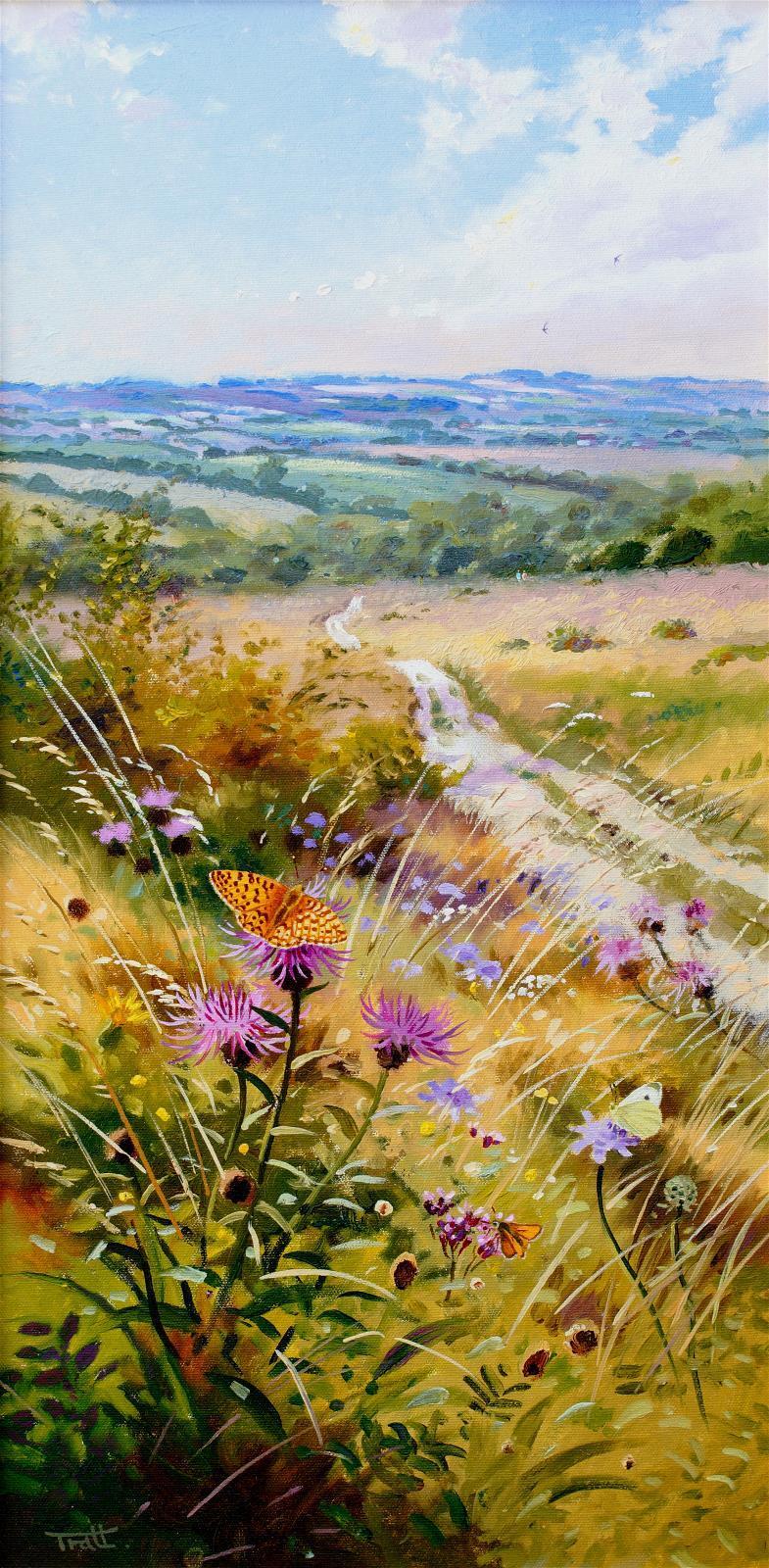 <p>Chalk Downland Butterflies by Richard Tratt</p>