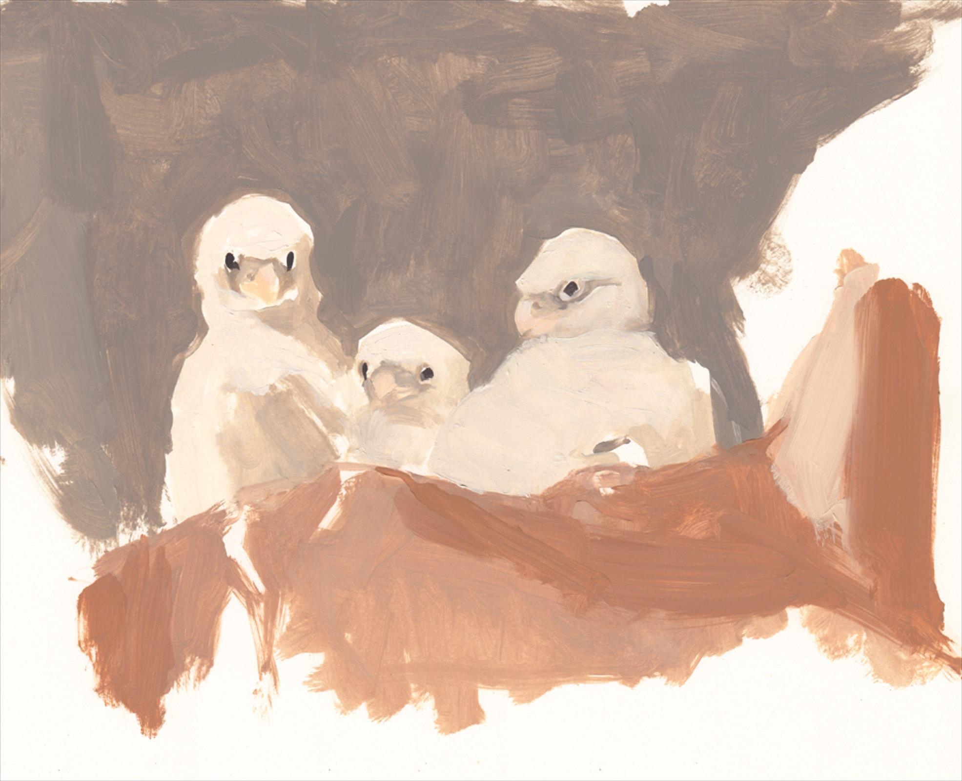 <p>Three young Peregrines by Esther Tyson</p>