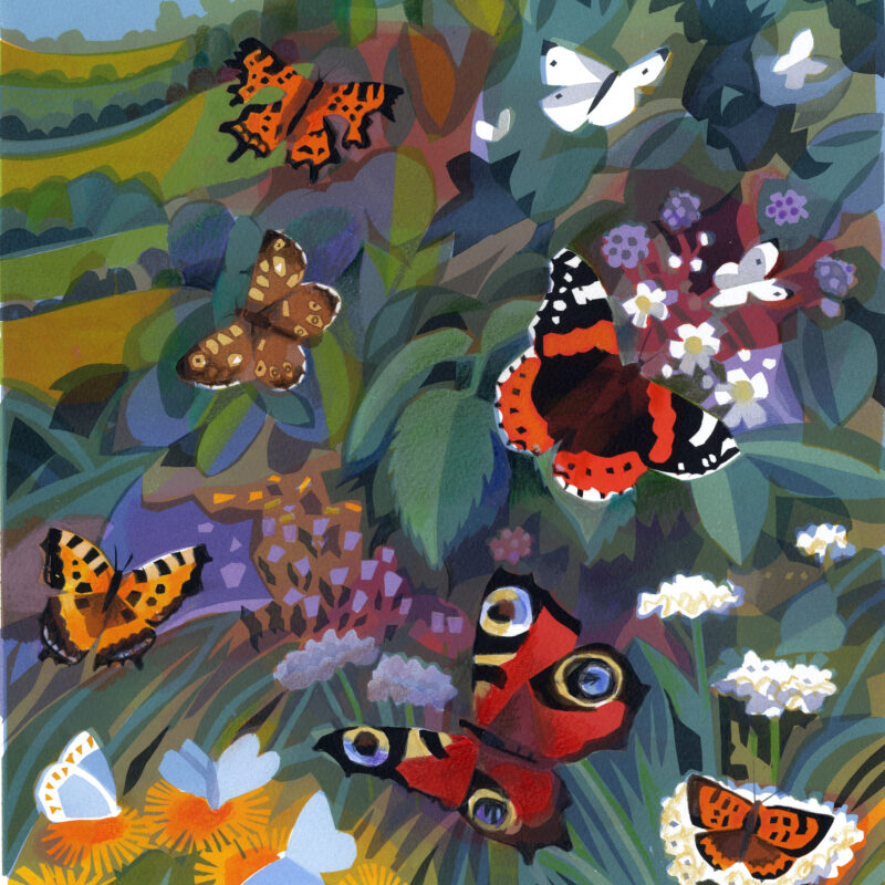 Butterflies by Carry Akroyd