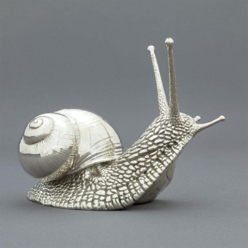 Silver Garden Snail by Nick Bibby