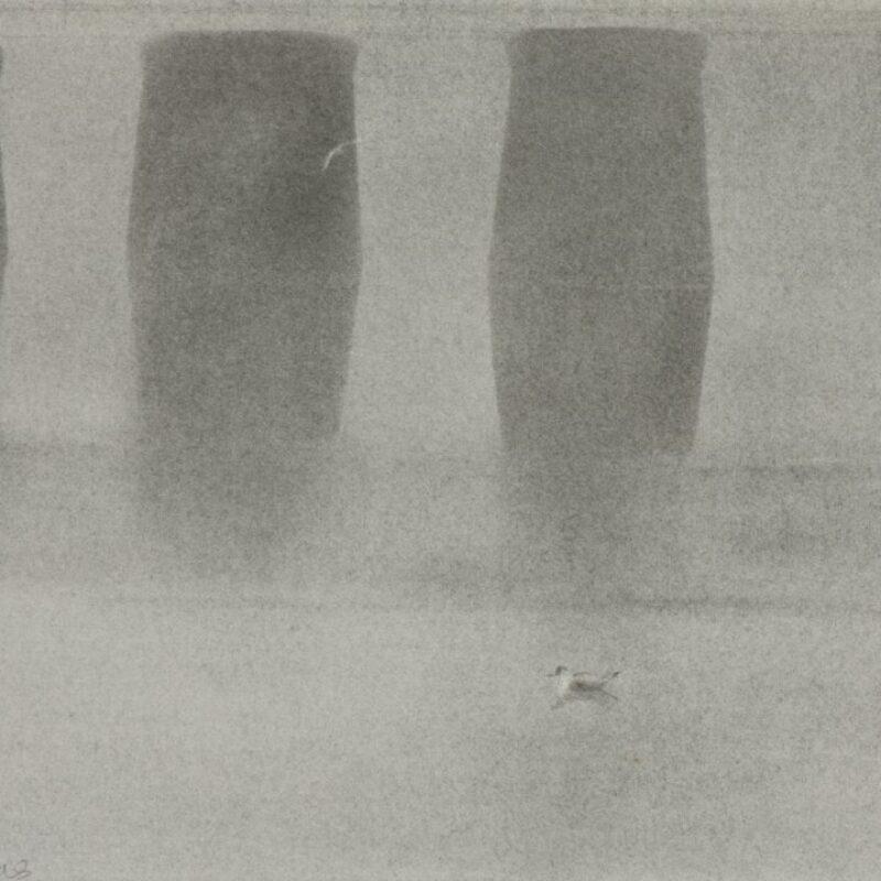 Fog and wading birds, Arnside by Fiona Clucas