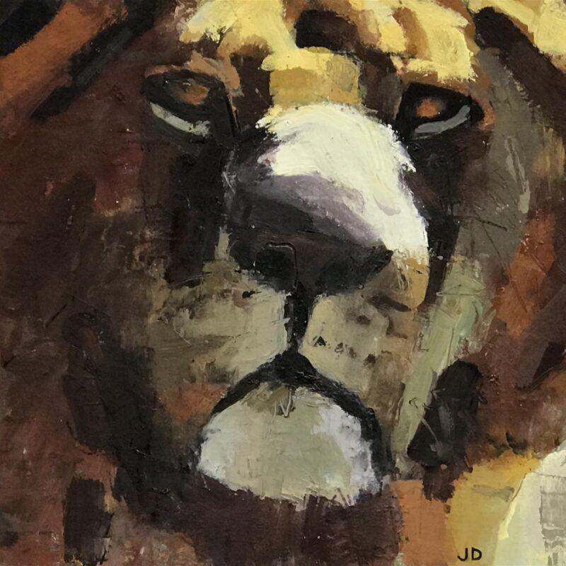 Lion by John Dobbs