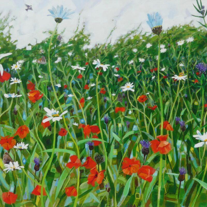 Wildflower meadow by Brin Edwards