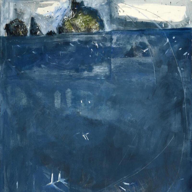 Gannets over the Atlantic by Kittie Jones