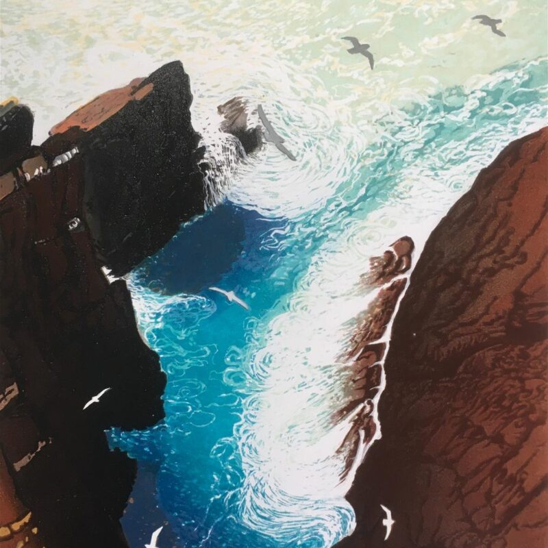 Fulmars over Mad Bay by Julia Manning